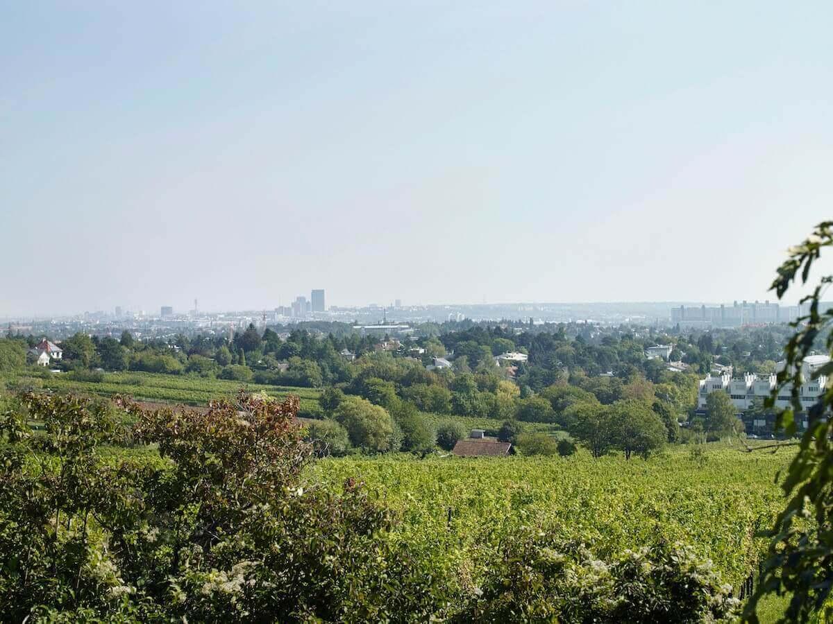 Provisionsfreie Wohnungen mit Blick auf Wien